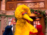 Episode 201: A Big Bird Surprise