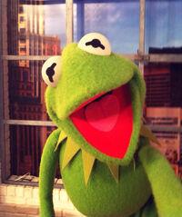QVC-Kermit-(2014-03-16)
