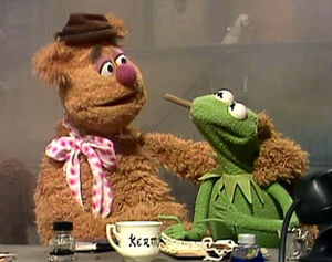 Quotes On The Muppets As Adult Oriented Characters Muppet Wiki