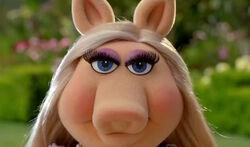Piggy angry eyes Lipton