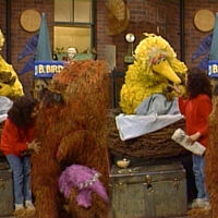 Kiss maria big bird snuffy