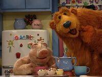 Bear214i