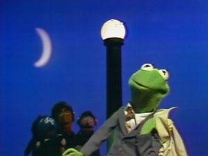 Song.thisfrog