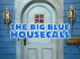 214 The Big Blue Housecall