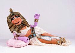 Cleopatra-piggy-wide