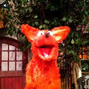 Vine fox say