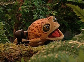 Big Old Bullfrog