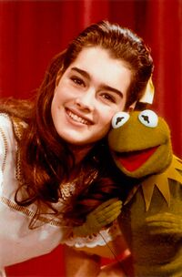 Brooke Shields11