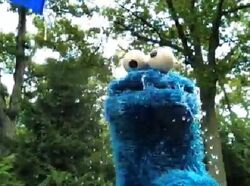 Cookie IBC