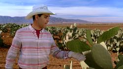FoodieTruck-Cactus01