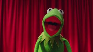 OKGo-Muppets (13)