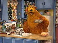 Bear304a