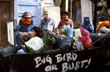 Follow That Bird Oscar car