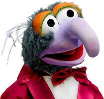 MR Gonzo3