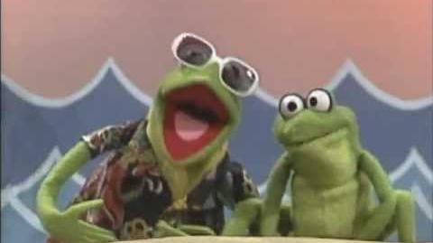 "Sesame Street ""Caribbean Amphibian"" with Kermit"