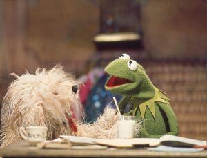 Muppy and Kermit