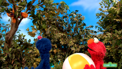 Grover-Beachball