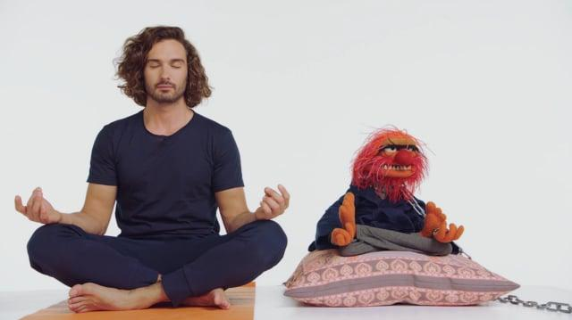 Food and Wellness Campaign The Muppets & Joe Wicks