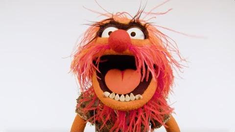Animal Shares Some Deep Thinking Muppet Thought of the Week by The Muppets