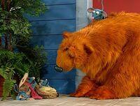 Bear317c