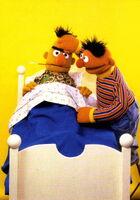 Ernie bert sick