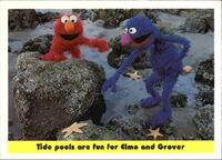 1992 sesame trading cards 48