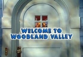 401 Welcome to Woodland Valley