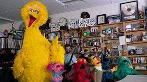 Sesame Street NPR Music Tiny Desk Concert