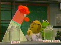 Beaker flat muppet madness
