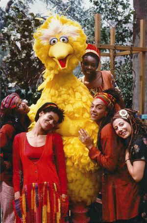 Zap Mama with Big Bird