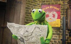 MMW promo Kermit map