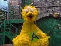 BigBird.A