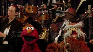 SesameJazz-ElmoHoots