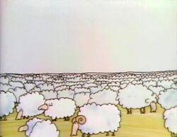 BCayard.Sheep