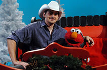 Elmos-Christmas-Brad