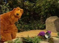 Bear425b