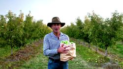 FoodieTruck-Apples02