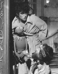 Melissa Manchester Kermit Jim