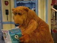 Bear233a