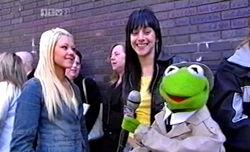 Reporter Kermit on Ant & Dec's Saturday Night Takeaway