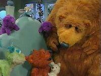 Bear124i