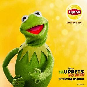 KermitLipton