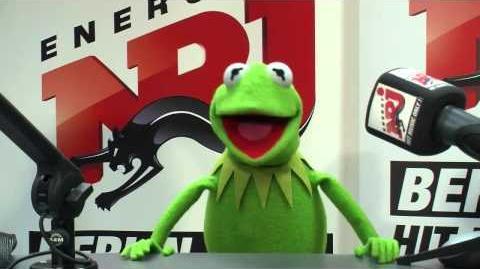 Kermit der Frosch in der ENERGY Berlin Toastshow