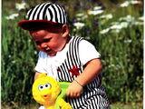 Sesame Street ride-on toys (Playskool)