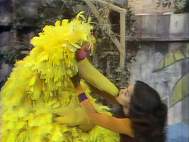 Big Bird Maria kiss 0673