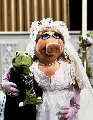 Kermit Piggy wedding photo TMS310
