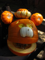 Big thunder pumpkin fozzie