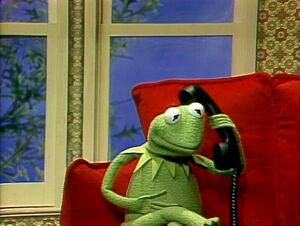 Kermit-CallBernie