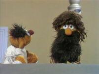 Bert-Beard
