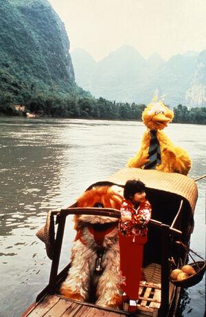 BigBird&BarkleyInChina